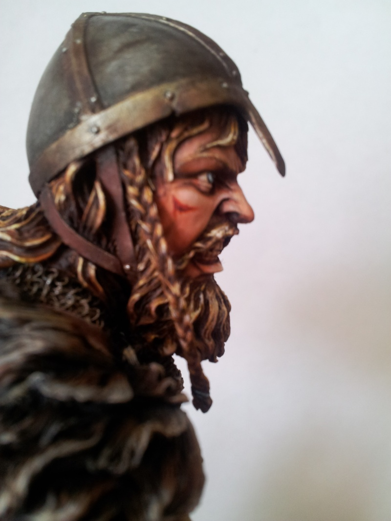 Viking fury ... 20140514