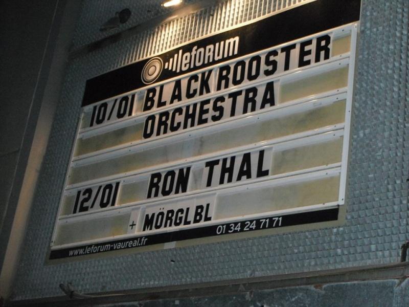Bumblefoot en tournée française, hiver 2013-2014 15450110