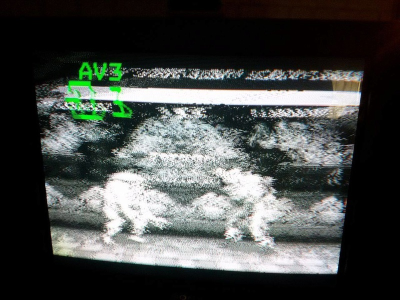 PCEngine et AVBooster : image grise 18338910