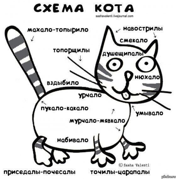 Кошатинские - Страница 16 5m510