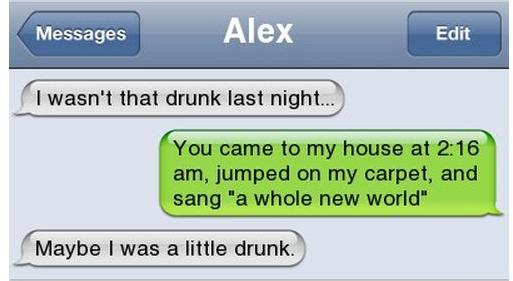 I wasn't that drunk... Drunk210