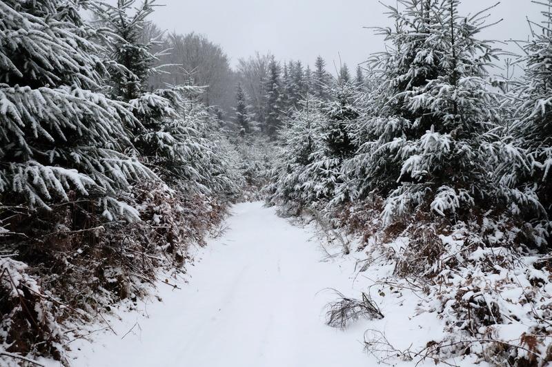 L'hivernale 2017 Morvan Dscf0011