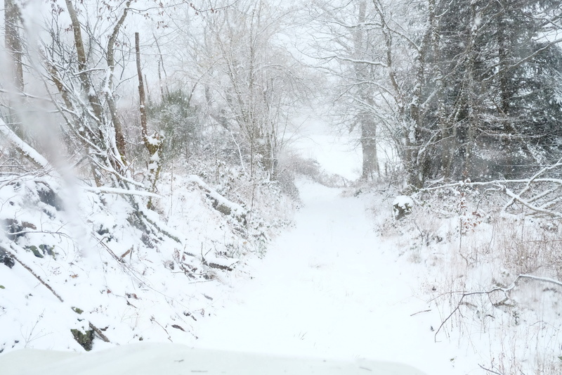 L'hivernale 2017 Morvan Dscf9817