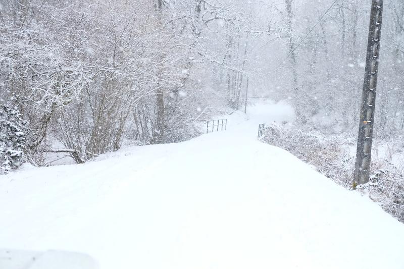 L'hivernale 2017 Morvan Dscf9913