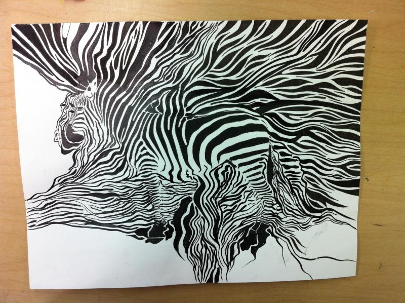 Camouflage du zèbre. (technique d'utilisation de la plume)  Img_1410