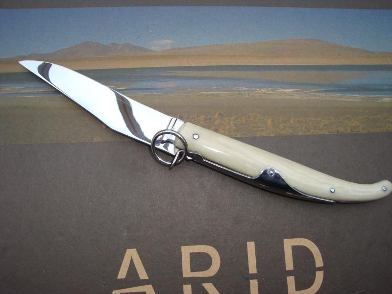 Eléments pour restaurer un couteau Dsc03661