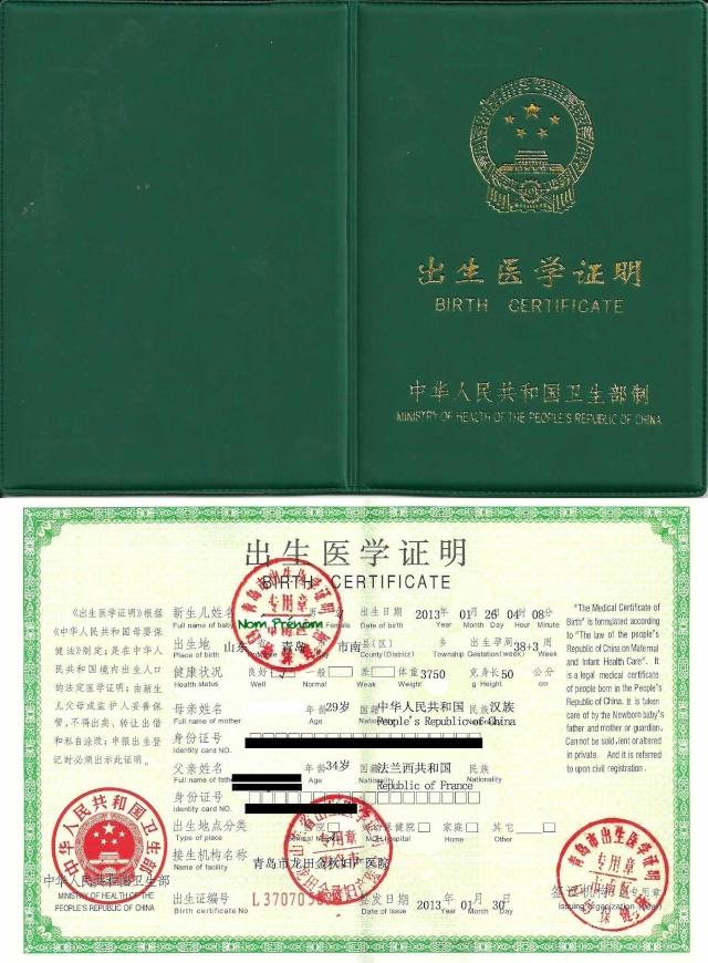 Enfants nés en Chine et issus de Couples Mixtes (Nationalité et Visas) Exempl11