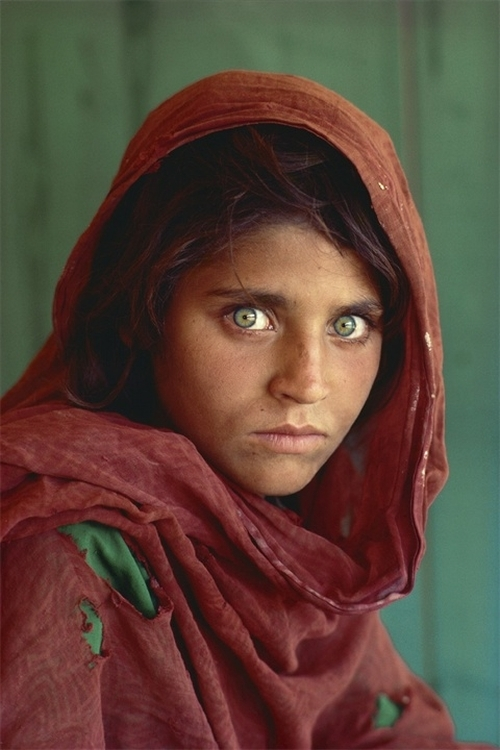 Sharbat Gula par Pisco Sharba10