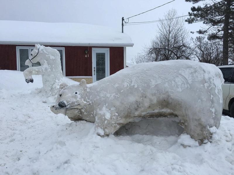 Mon pays c'est l'hiver 16463610