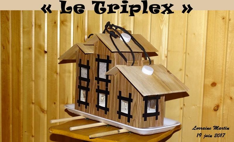 Triplex mangeoire recyclée  Triple10
