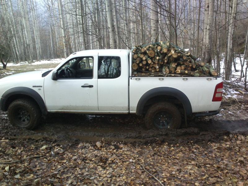 pick up - Pick-up per trasporto legna e ramaglie per lavori in tree climbing Dsc_0115