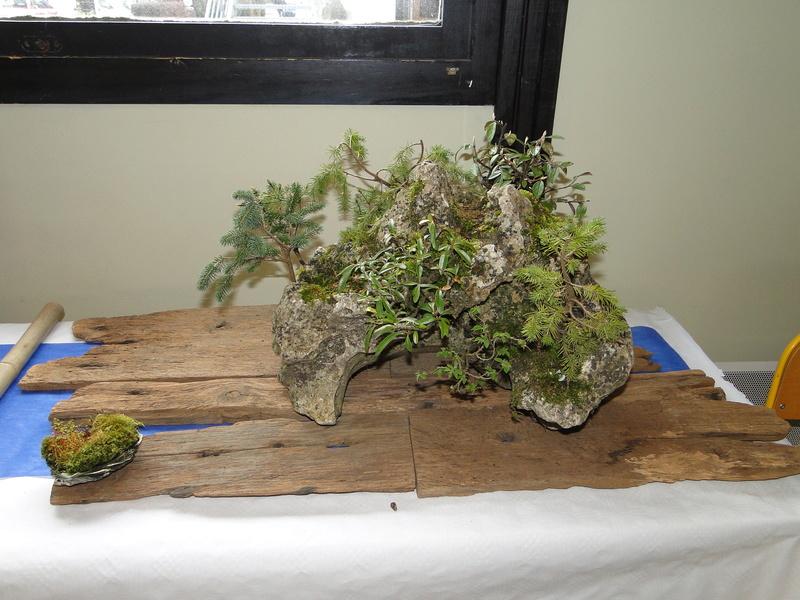 fête des plantes Merdrignac 2017  Dsc00925