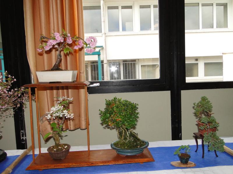 fête des plantes Merdrignac 2017  Dsc00932