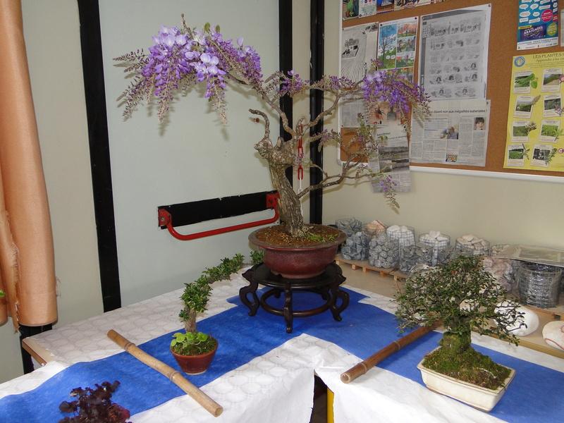 fête des plantes Merdrignac 2017  Dsc00939