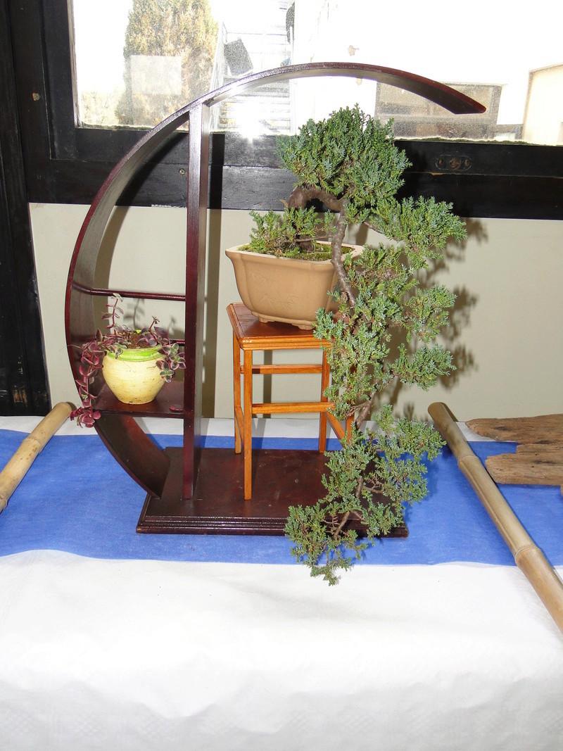 fête des plantes Merdrignac 2017  Dsc00946