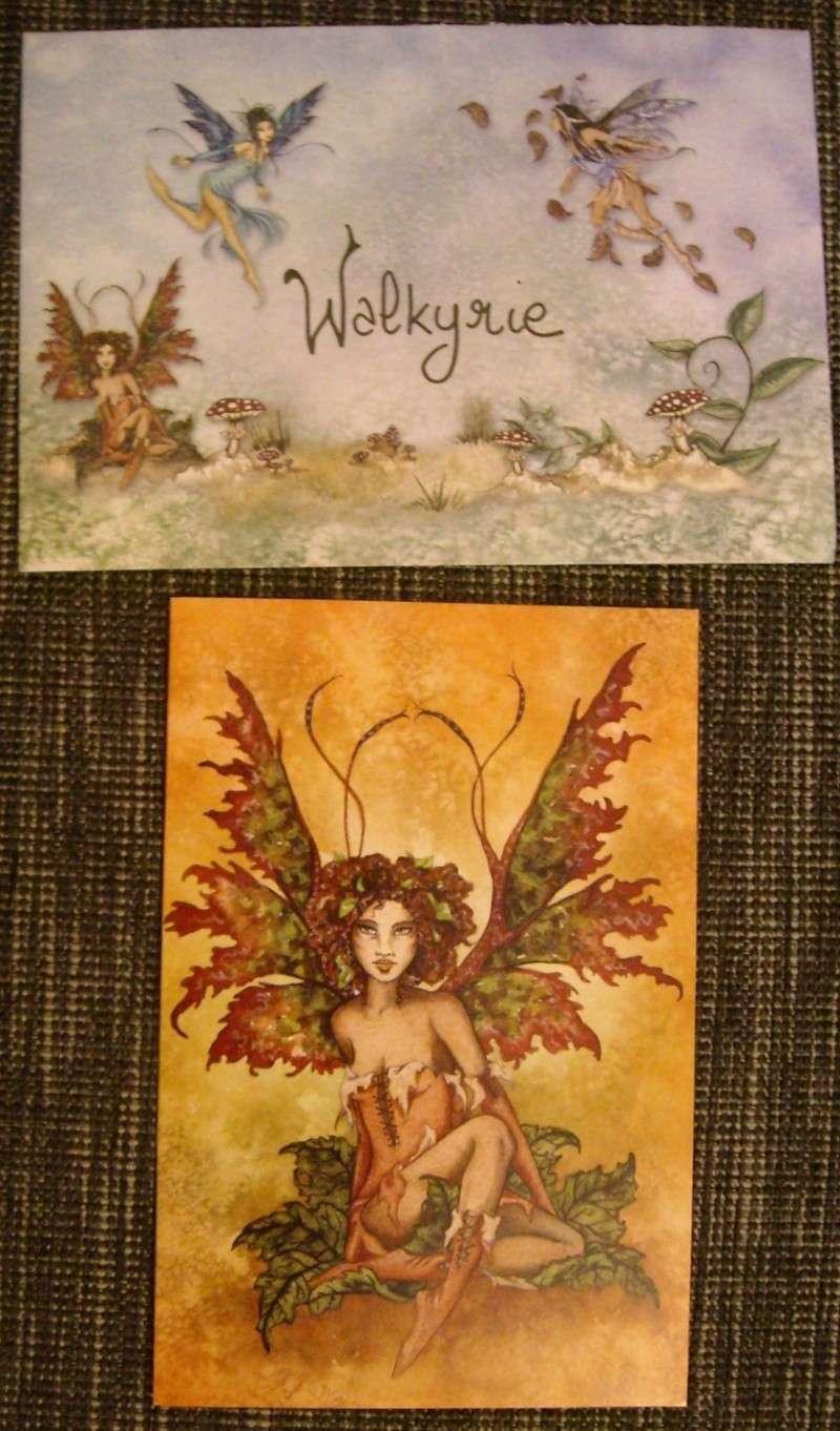 Walkyrie heureuse swappée grâce à Meygara  Dscn0014