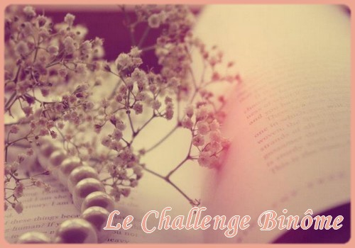 Challenge binôme 2014 [Clos] The_bo10