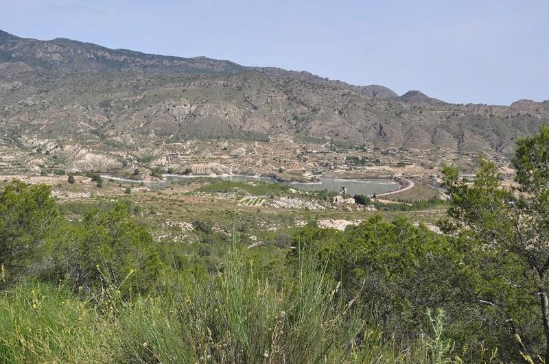La coalition Charentaise fait les Sierras Andalouse et le désert de Gorafé Dsc_0023