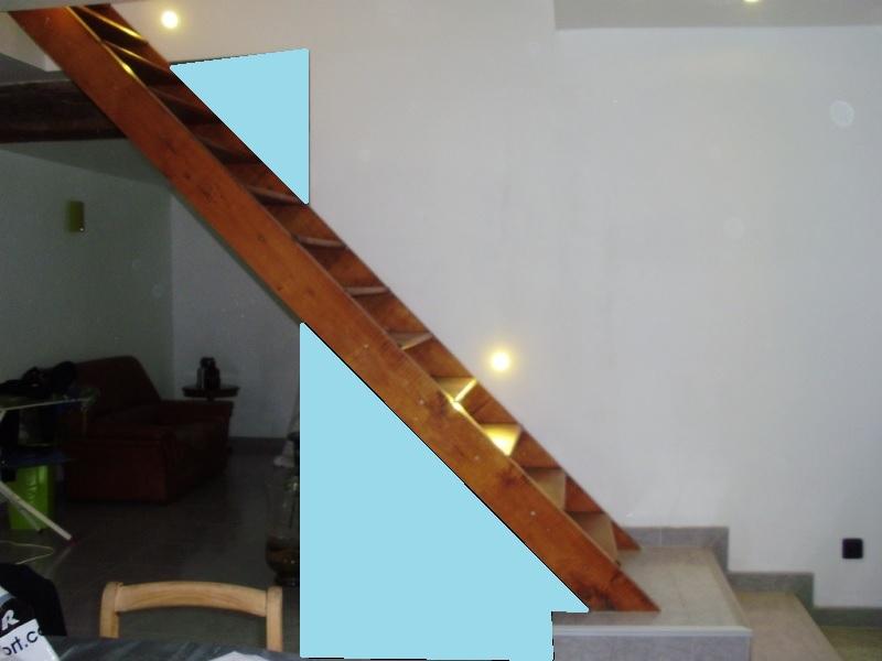 besoin d'idées pour un escalier trop visible Syrinx10