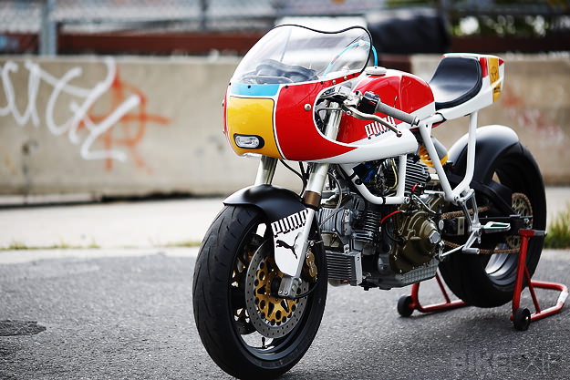 Cadre blanc Ducati11
