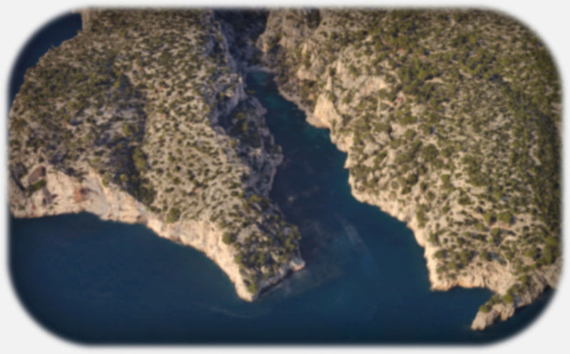 Marée noire Image710