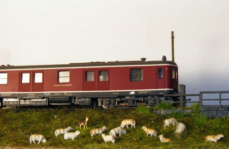 Gütertriebwagen VT 20.5 (DB) Dscf7115