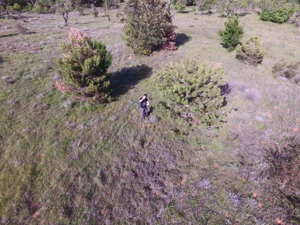 Sortie Montsech y Guara mai 2017 10410