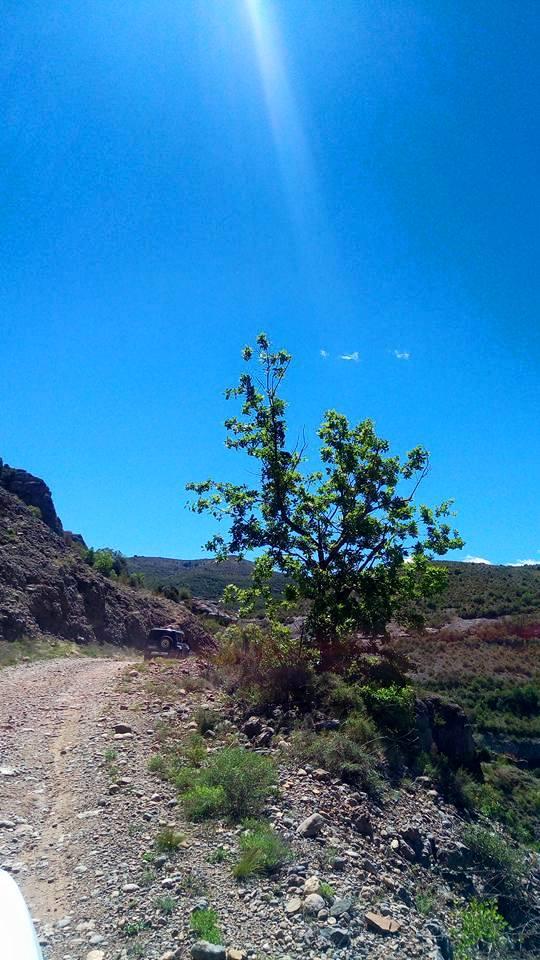Sortie Montsech y Guara mai 2017 11710