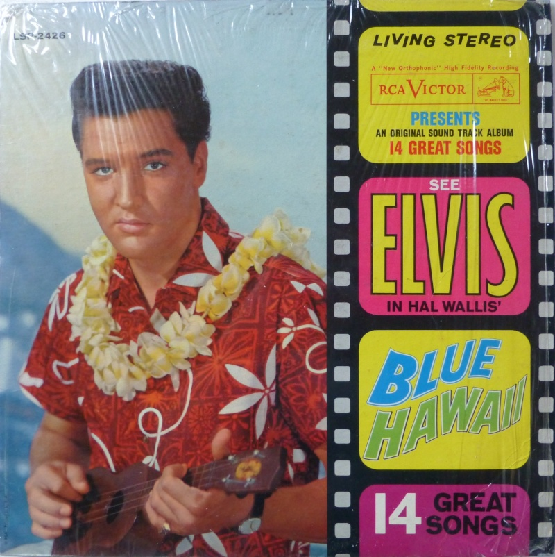 BLUE HAWAII P1020510
