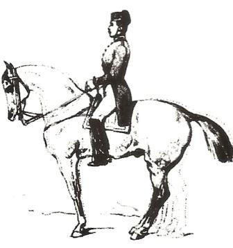 Existe t-il une équitation véritablement juste ? Bauche10