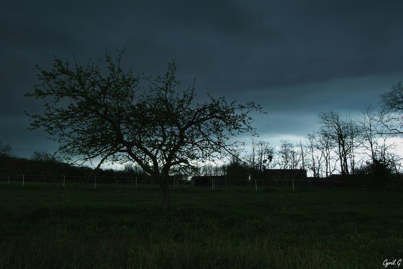 Quand l'orage s'annonce  Imgp2413