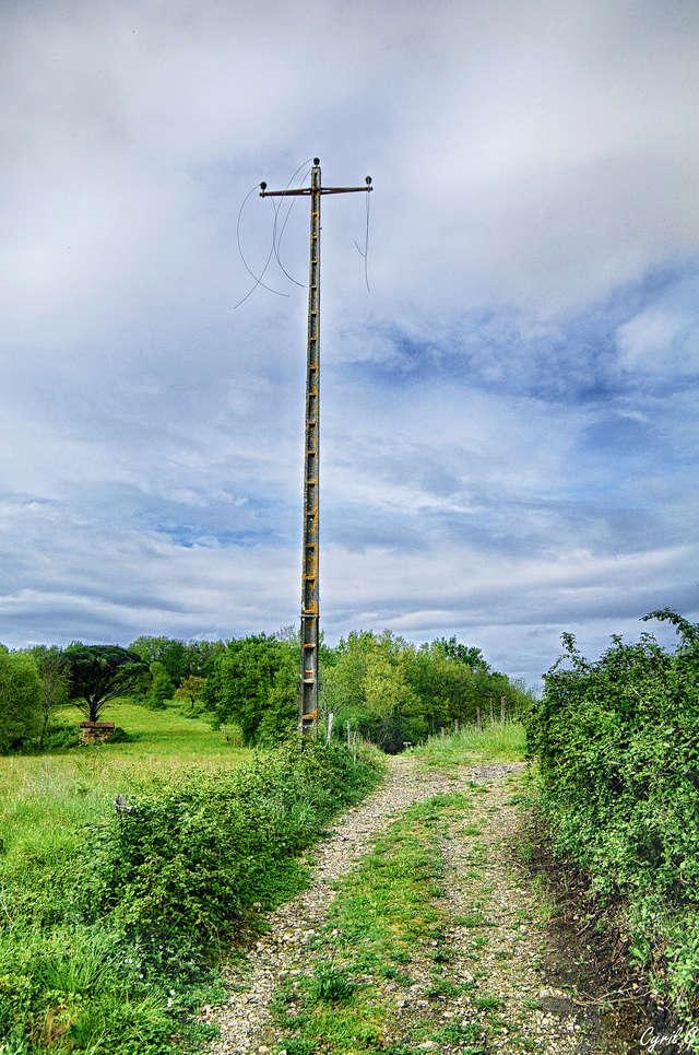 Petite randonnée Imgp3111