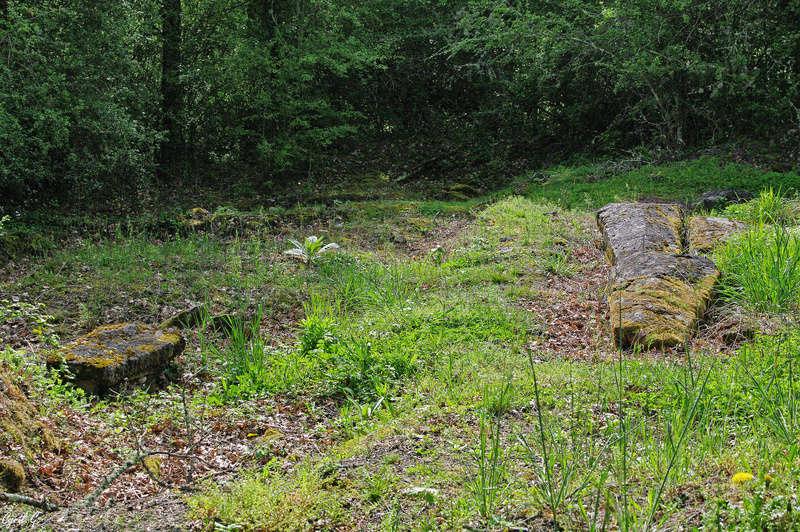 Petite randonnée Imgp3212