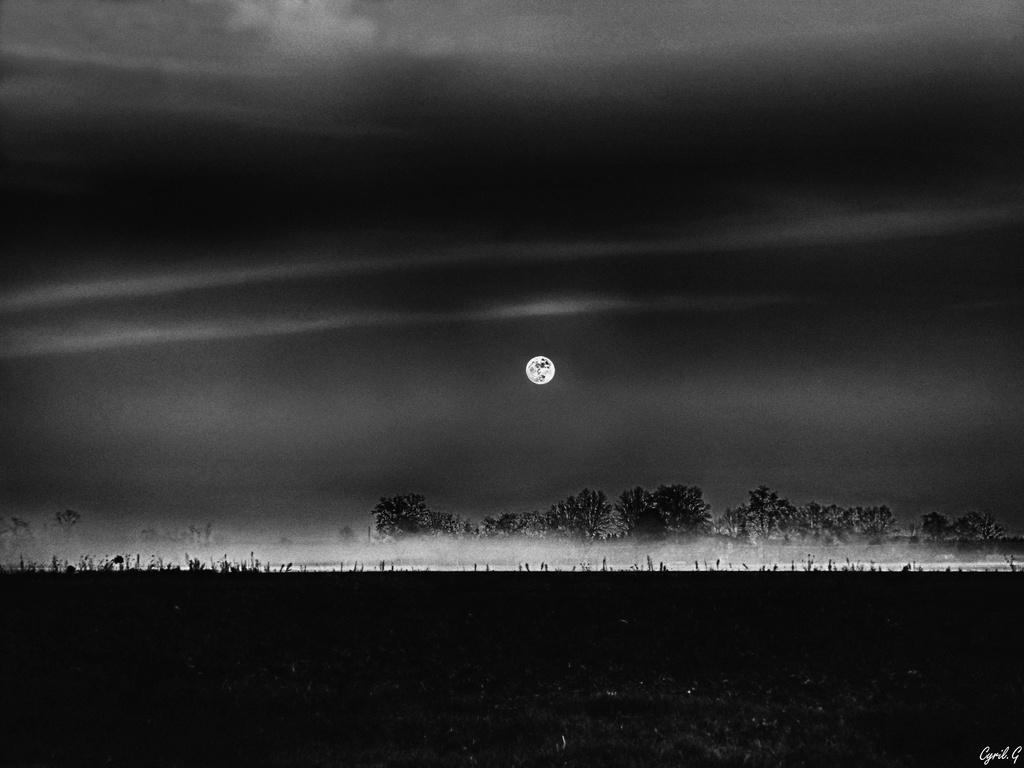 La nuit des loups-garous P1040614
