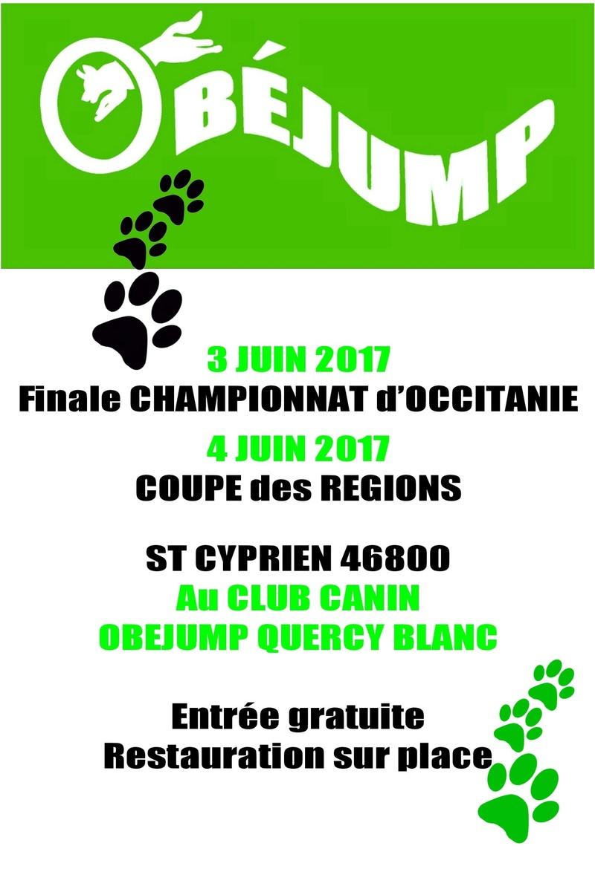 Concours d'Obéjump Palett10