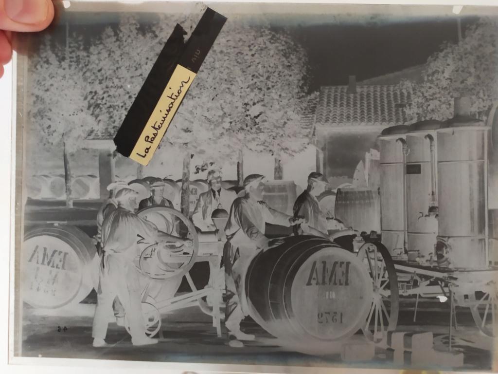 Plaque de verre - négatif - Pasteur Img_2058