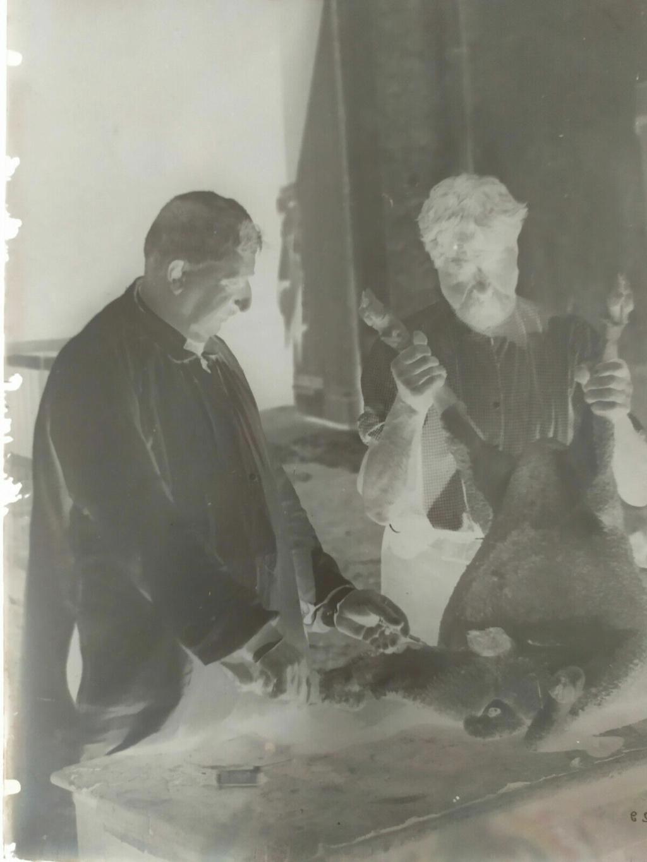 Plaque de verre - négatif - Pasteur S-l16027
