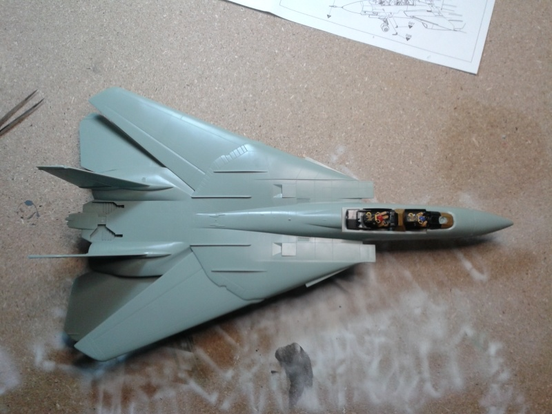 F-14 Miss Molly  20131262