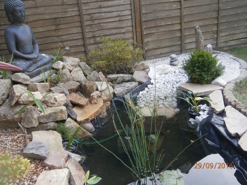 mon bassin style japonais  1710