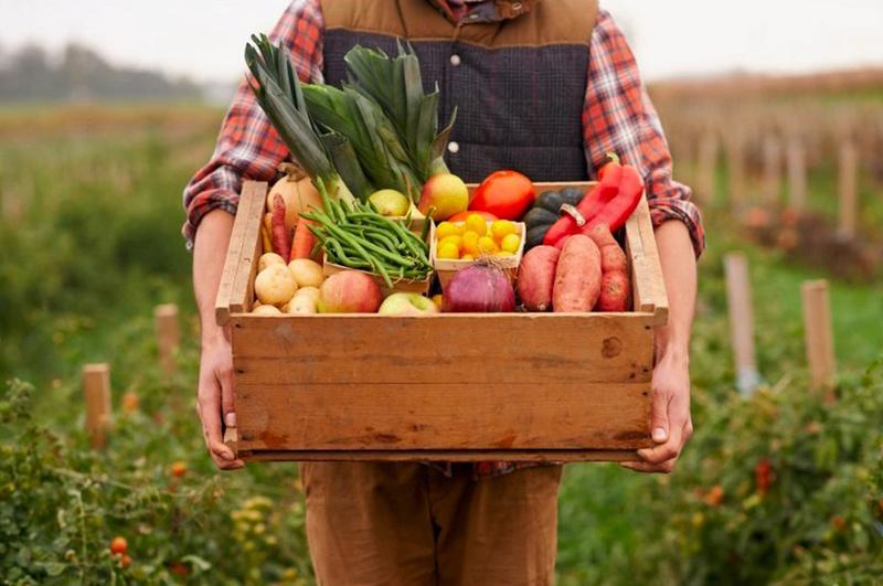 Les vrais avantages d'une alimentation bio 1207