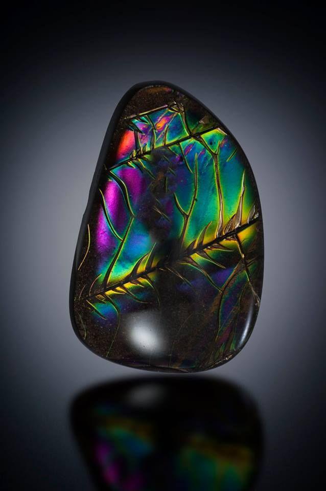 Obsidienne Manto Huichol 1677