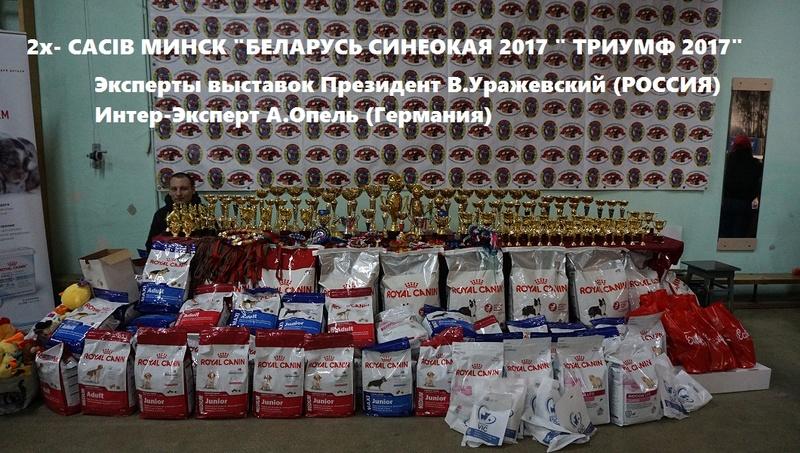 """30-04-2017  2х-CACIB IKU Беларусь Синеокая"""" Триумф 2017  Dsc00211"""