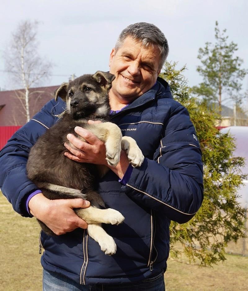 ВОСТОЧНО-ЕВРОПЕЙСКАЯ ОВЧАРКА ВЕОЛАР ЕРМАК Dsc02913