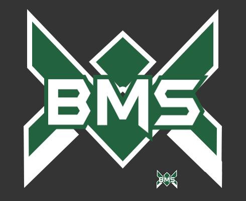 Novo visual da BMS Logo-b12