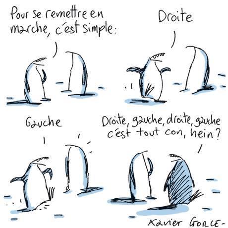 """Macron """"en marche"""" ! - Page 3 18485711"""