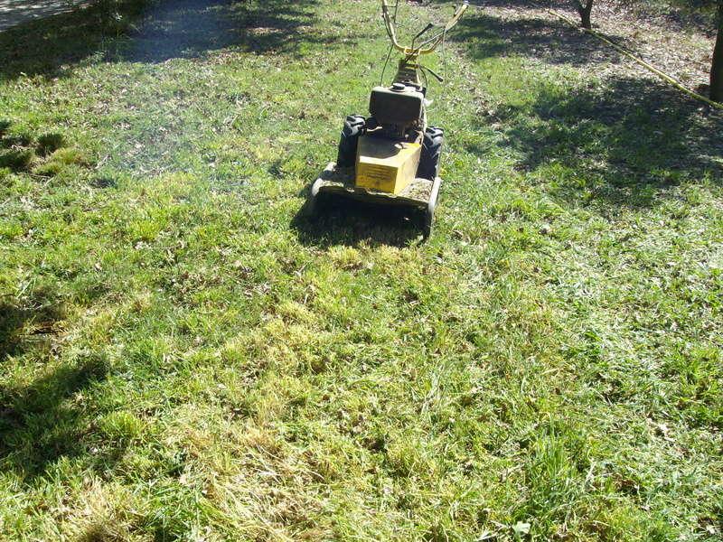 Tonte de pelouse Pelous12