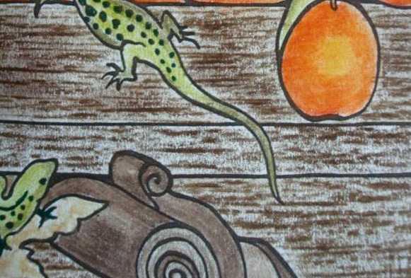 créer des effets de textures aux crayons Textur10