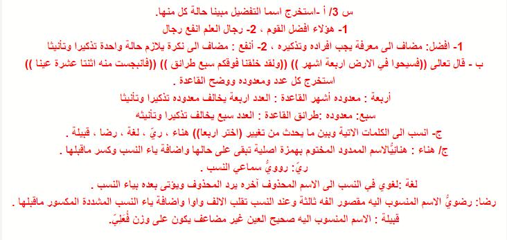 مرشحات مادة اللغة العربية للصف الثالث المتوسط 2019 الدور الاول  213
