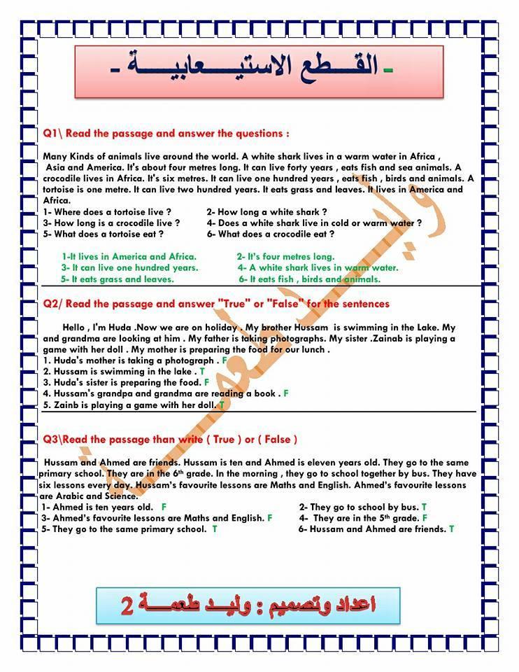 ملزمة الاسئلة الوزارية للغة الانكليزية للصف السادس الابتدائي - مرشحات 2019 713