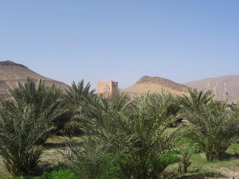 [Maroc Camp/Découverte]  camping au sud de Foum el Hasn Dsc04911